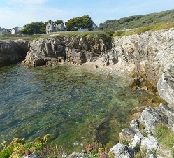 Beautiful walks along the wild coast in Le Croisic (Brittany)